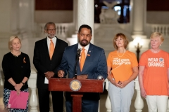 June 5, 2019: Senator Street joins fellow members of the Pennsylvania Senate Democratic Caucus to outline various policy on gun reform in the commonwealth in an effort to provide substantive reform that addresses the proliferation of firearms as well as those effects at a state level.