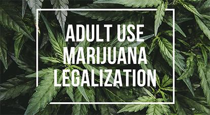 Adult Use Marijuana Legalization